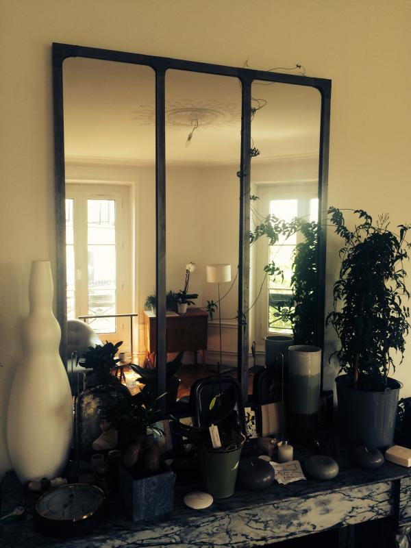 Workshop mirror colonized by a climbing plant!