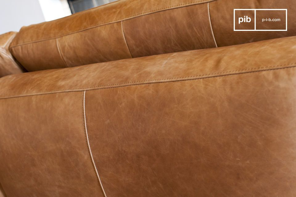 The seams segment the sofa with elegance and style.