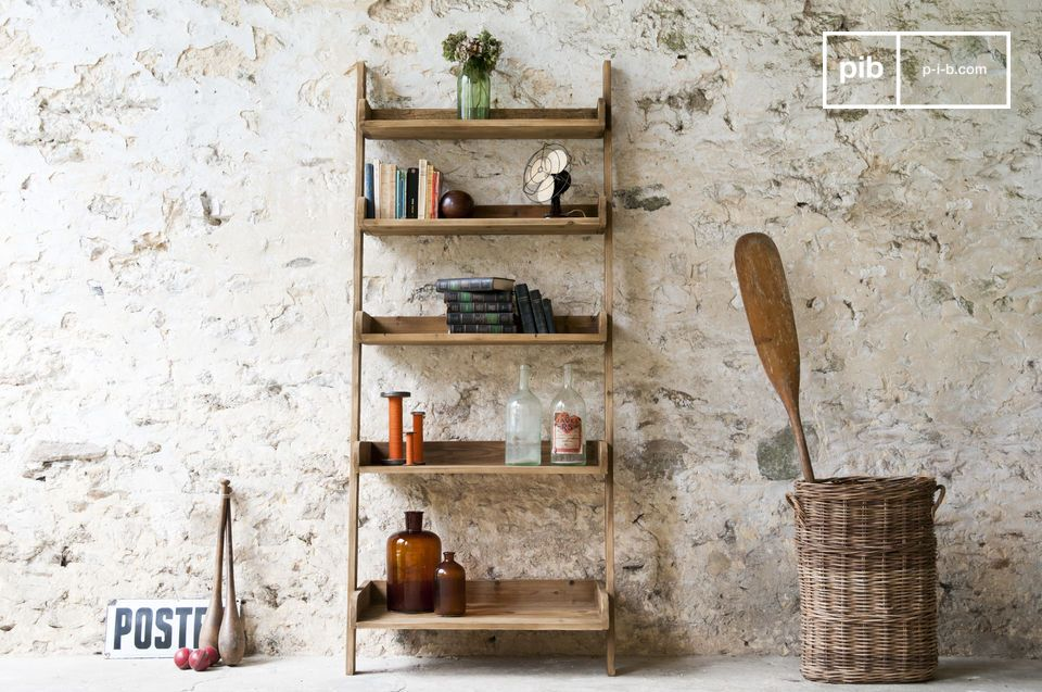 Big ladder bookshelf