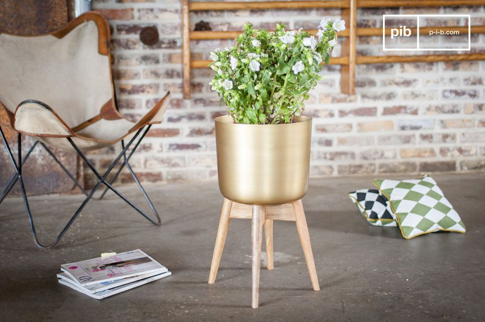 Brass plant holder Port-Cros
