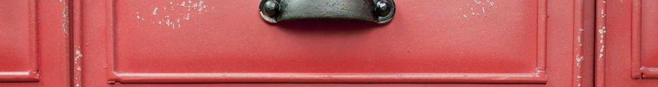 Material Details Brighton metallic chest