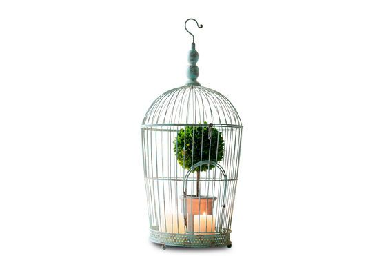 Deselle bird cage Clipped