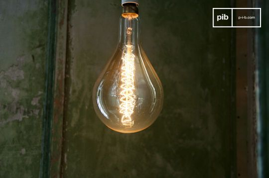 Giant bulb with long filament