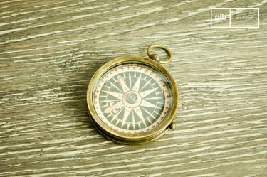 Helmsman's compass