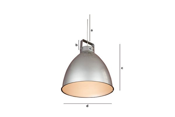 Product Dimensions Jieldé Augustin ceiling light