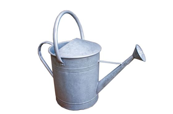 Metal watering can Clipped
