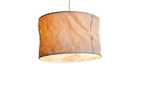 Newport Hanging lamp Clipped