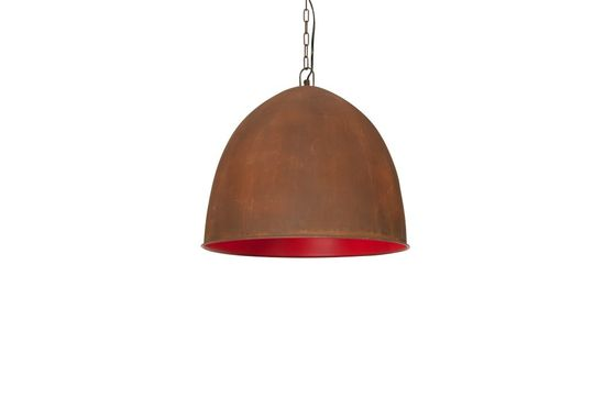 Raspberry Steel pendant light Clipped