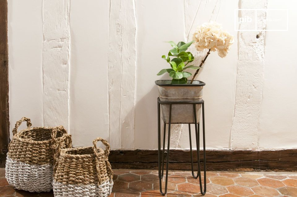 Rebstock Plant Stand