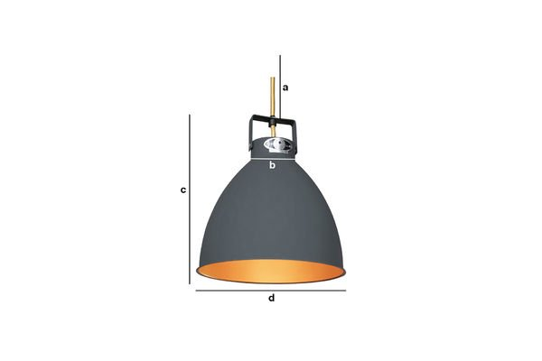 Product Dimensions The Augustin Jieldé Ceiling light  24 cm