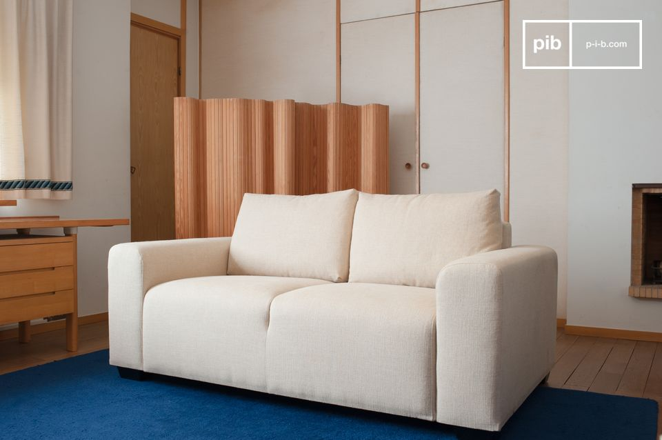 The cushions are removable and removable to facilitate maintenance.