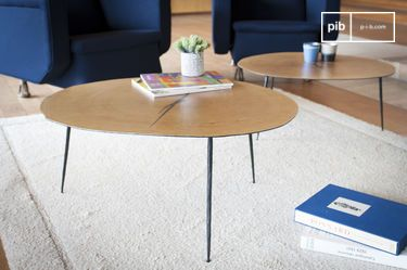 Xyleme coffee table
